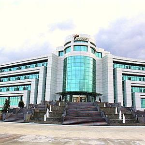 Naftalan Hotel Qashalti  4*